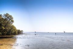 海岛的海岸在Tofo附近的 免版税库存照片