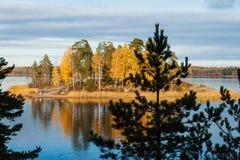 海岛的秋天风景在水和森林中间的 免版税库存图片