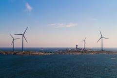 海岛背景的风力植物 库存照片