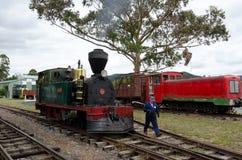 海岛葡萄酒铁路Kawakawa NZ海湾  库存图片