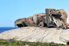 海岛袋鼠卓越的岩石 库存图片