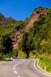 海岛马德拉岛山路 库存照片