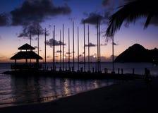 海岛鸽子日落 库存图片