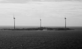 海岛黑白背景的风力植物 库存照片