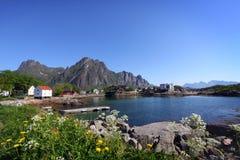 海岛iv lofoten 库存照片