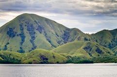 海岛komodo横向 库存图片