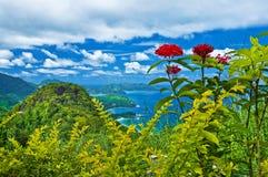 海岛mahe塞舌尔群岛 免版税库存照片