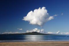 海岛rangitoto 免版税图库摄影