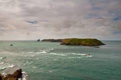 海岛skomer 免版税图库摄影