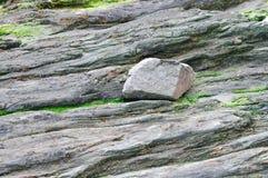 海岩石海岸关闭 库存图片