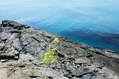 海岩石 库存照片