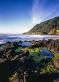 海岸俄勒冈海岸线 免版税库存照片