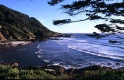 海岸俄勒冈纵向 免版税库存图片