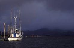 海岸俄勒冈纵向 免版税图库摄影