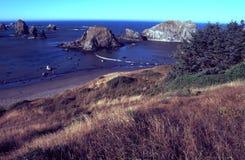 海岸俄勒冈纵向 库存照片