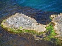 海岸克里米亚西部海运的tarhankut 库存图片