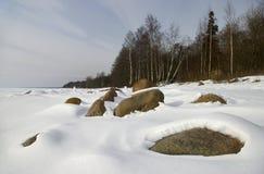 海岸冬天 免版税库存图片
