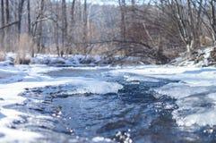 海岸冰横向河水冬天 库存照片
