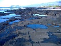 海岸加拉帕戈斯群岛 免版税库存图片