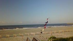 海岸北卡罗来纳海滩 股票视频