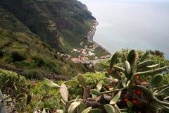 海岸南的马德拉岛 免版税库存图片