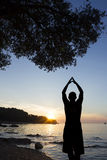 海岸向致敬的太阳的人 免版税库存图片