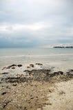 海岸在不列塔尼法国 免版税库存照片