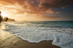 海岸在哥斯达黎加 免版税库存照片
