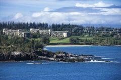 海岸夏威夷檀香山 库存照片