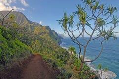 海岸夏威夷的考艾岛 图库摄影