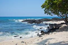 海岸夏威夷 免版税库存照片