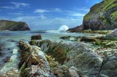 海岸多西特英国 免版税库存照片