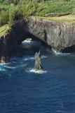 海岸岩石的毛伊 免版税库存照片
