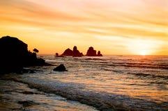 海岸新的日落西方西兰 库存照片