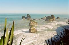 海岸新的西方西兰 免版税库存图片