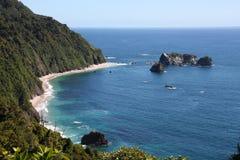 海岸新的西方西兰 图库摄影