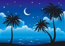 海岸晚上向量 免版税库存照片