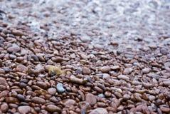 海岸普罗旺斯红色石头 库存照片