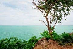 海岸横向岩石海运 库存照片