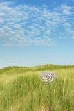 海岸沙丘荷兰语横向 免版税库存照片
