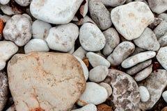 海岸海小卵石 免版税库存照片