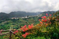 海岸海岛马德拉岛北部村庄 免版税库存图片
