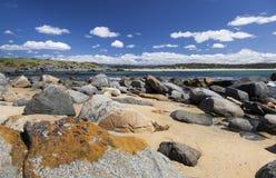 海岸海岸线横向全景礁石视域 Bingie (在Morua附近) 澳洲 库存图片