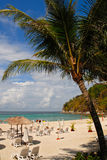海岸海洋palma 图库摄影