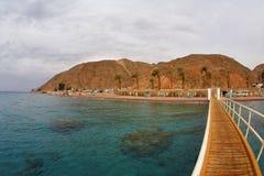 海岸珊瑚穿过 图库摄影