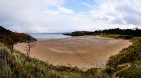 海岸的全景在阿兹森林公园在Donegal爱尔兰 免版税库存照片