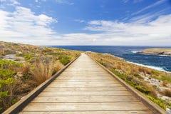 海岸的木板走道 免版税库存图片