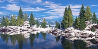 海岸的森林 免版税图库摄影