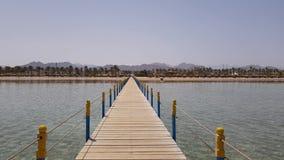 海岸的看法从码头的 影视素材