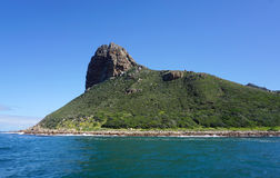 海岸的美好的风景在开普敦,南非 免版税库存图片